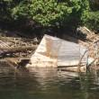 Abandoned Dock Program